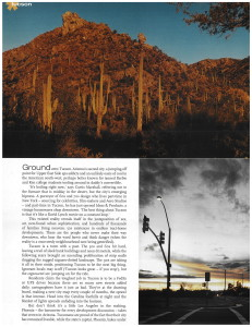 Desert Storm_Page_2
